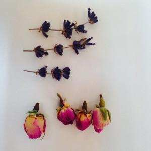 ラベンダーとバラのつぼみ