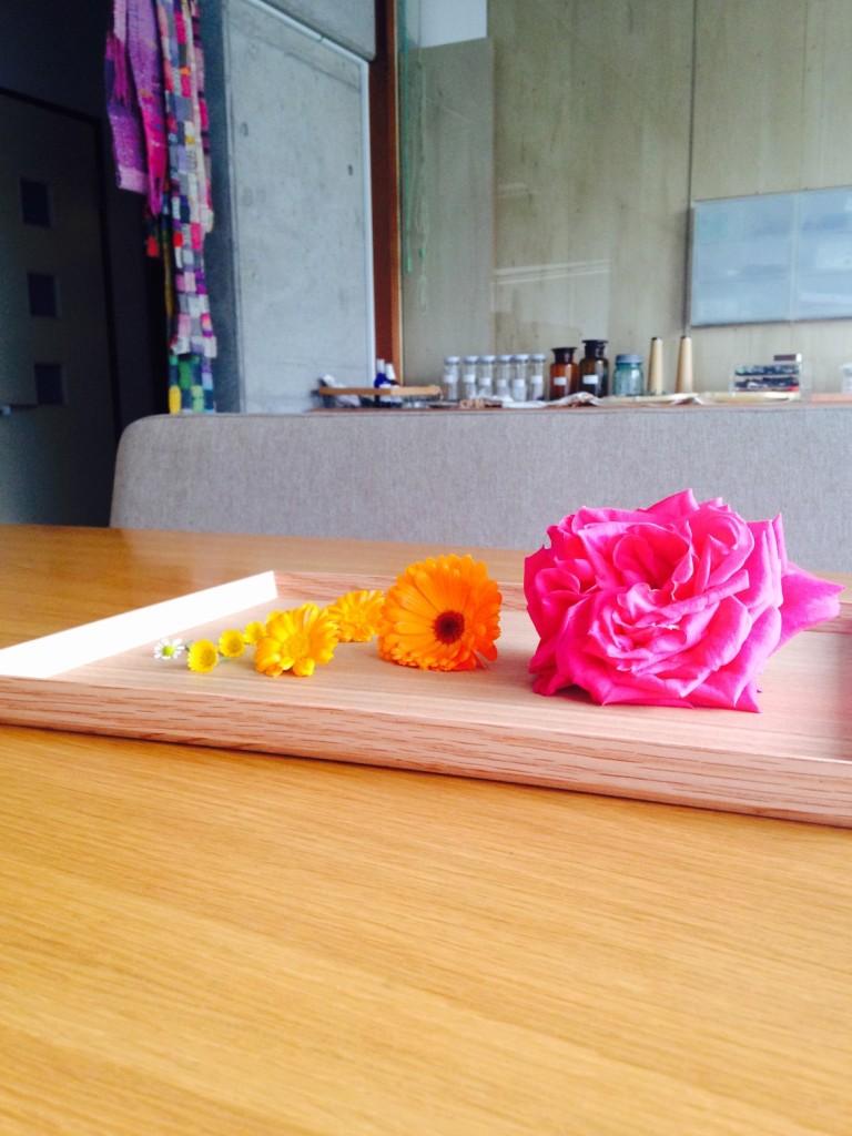 オレンジ色の花がカレンデュラさん、右のピンク色がローズさん